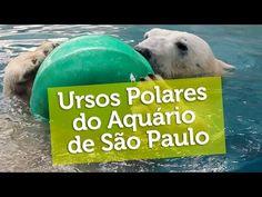 || Aquário de São Paulo ||
