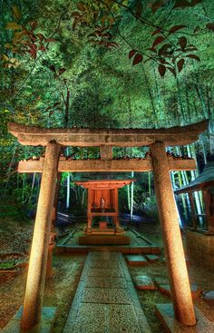 In Kyoto, there is a wonderful and unexpected temple that weaves through an old bamboo forest. It weaves up, down, and around hills with warm, calming bamboo swaying about. Here and there, little temples, urns, and benches are placed. Everything is delica