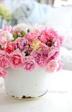 gorgeous roses