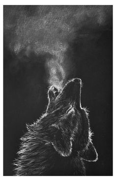 Wolf Black And White, Black And White Painting, White Art, Animals Black And White, Black And White Design, White White, Artwork Lobo, Wolf Artwork, Wallpaper Lobos