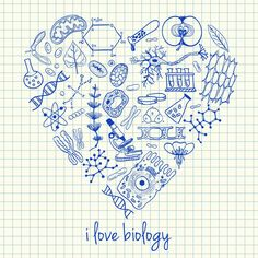 biology tattoo zeichnung Biology drawings in heart shape Wall Mural Pixers - We live to change Biology Tattoo, Biology Drawing, Dna Drawing, Biology Art, Biology Lessons, Science Biology, Science Art, Science Doodles, Science Symbols