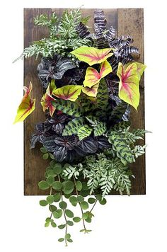 Living Wall Vertical Planter - would like to make six of these for the walls on both sides of the window to kitchen?