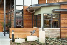 PetCare Veterinary Hospital in Santa Rosa California by Animal Arts Design Studios