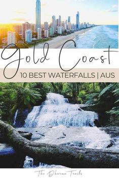 Looking for the best things to do in the Gold Coast? We've found the 10 best Gold Coast Waterfalls you can visit. Whether you want to swim under them, hike to them, or stay near them, we've got the tips for you! Brisbane, Melbourne, Sydney, Cedar Creek Falls, Travel Destinations, Travel Tips, Travel Goals, Travel Guides, Gold Coast Australia