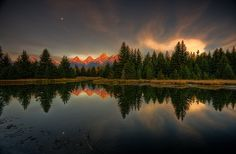 Morning Reflection water mountain forest landscape