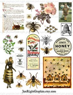 Vintage Bees Clip Art Digital Collage Sheet by JustRightGraphics Collage Sheet, Collage Art, Collage Ideas, Honey Label, I Love Bees, Vintage Bee, Bee Crafts, Paper Crafts, Bee Art