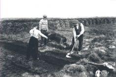Kent het Peelven nog meer Romeinse schatten?