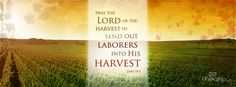 Pray the Lord of the Harvest to send out laborers into his harvest. Luke 10:2