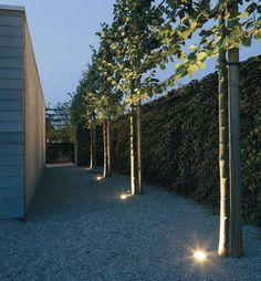 Idee: een terrasspot (spots) in mijn toekomstig bankirai-terrasje? // uitlichten boom