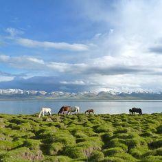 On Silk Road. Song Kul lake #Kyrgyzstan