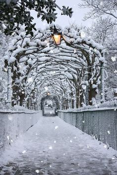 New winter landscape photography wonderland paths Ideas Winter Photography, Landscape Photography, Nature Photography, Photography Tips, Levitation Photography, Exposure Photography, Beach Photography, Abstract Photography, Wedding Photography