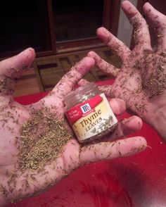 i've got way too much thyme on my hands - Imgur