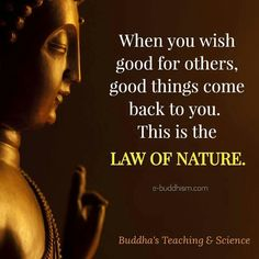 Daily Uplifting Quotes & Sayings Buddhist Quotes, Spiritual Quotes, Wisdom Quotes, Life Quotes, Buddhist Teachings, Peace Quotes, Nature Quotes, Family Quotes, Buddha Thoughts