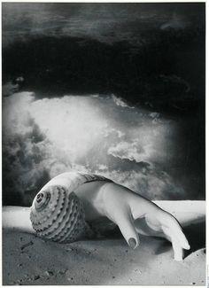 Dora Maar - Untitled (hand and shell), 1934