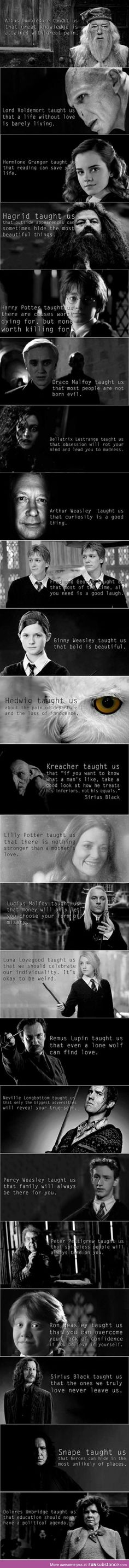 What the Harry Potter books thought us..