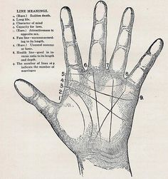 old palm reading chart