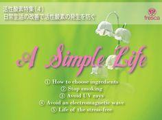 活性酸素特集(4)日常生活の改善で活性酸素の発生を防ぐ」 以下のように日常生活を改善することによって、体内の活性酸素の発生を防ぐことができます。  1.食材の選び方、調理方法を見直す:口に入る化学合成物質が減れば、体内で発生する活性酸素も減少します。実は食材の選び方や調理方法をちょっと見直すだけでビックリするほど化学合成物質を避けることができるのです。  2.夕バコをやめる:タバコを吸うと、毒性のたいへん強い活性酸素(ヒドロキシラジカル)が大量に発生します。  3.紫外線、放射線を避ける:紫外線や放射線が当たると、毒性の強い活性酸素(ヒドロキシラジカル)が発生します。  4.電子レンジ、テレビなどにあまり近づかない(電磁波を避ける):電子レンジ、テレビなどの家庭用電器製品から放射される電磁波もまた、活性酸素(ヒドロキシラジカル)を発生させる恐れがあるといわれています。  5.ストレスを溜めない:体はストレスを感じると、ストレスを解消するために抗ストレスホルモンを分泌します。抗ストレスホルモンが過剰に分泌されると、活性酸素(スーパーオキシドラジカル)が多く発生するのです。