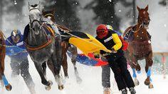 Skijoring behind horses on the frozen lake at St Moritz, Switzerland
