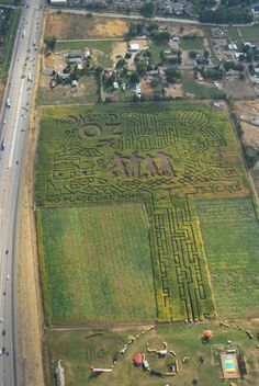 Idaho's 18th corn maze season begins - Meridian Press: On The Town: idaho corn maze, linder farms, farmstead, jim lowe, wizard of oz