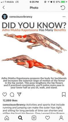 ustrasana has many benefits  fitness facts  yoga