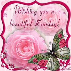 ❤️Wishing you a beautiful Sunday GIF