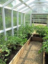Imagini pentru growing in winter in raised beds in greenhouse
