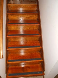 Stair treads for dogs. My dogs would so thank me for this. No more ...