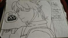 Link from legend of zelda twilight princess