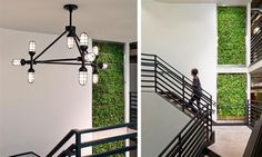 ndustrial Light Fitting With Black Design
