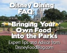 Tips and Advice for Bringing Food into Disney Parks