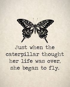 butterfly quotes with images Butterfly Quotes, Happy Quotes, Cute Quotes, Jokes Quotes, Healthy Habits, Real Talk, Pretty Quotes, Happiness Quotes, Funny Quites