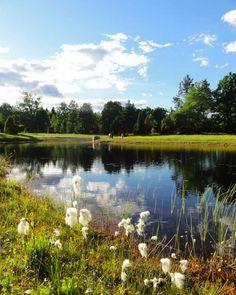 Tag med til Sverige i naturskønne omgivelser. Fordyb dig i flow og hatha yoga samt meditation. Nyd sund og lækker vegetarisk mad, sauna, søer og skov.