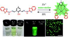 Nanomolar Zn(II) sensing and subsequent PPi detection in physiological medium and live cells with a benzothiazole functionalized chemosensor DOI: 10.1039/C5RA09150K