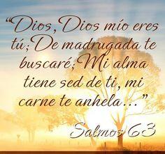 Salmo 63:1-2  Dios, Dios mío eres tú; De madrugada te buscaré; Mi alma tiene sed de ti, mi carne te anhela, En tierra seca y árida donde no hay aguas, Para ver tu poder y tu gloria, Así como te he mirado en el santuario.   ♔