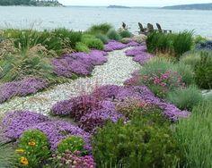 Cool wilder Garten gestalten Ideen Gartenwege umrandung stauden geh lzer
