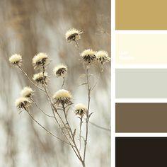 beige, black color, bright mustard, brown color, gray color, gray-brown, mustard, shades of brown, winter color combination, winter palette, winter palette 2016.