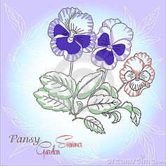 Pansies Stock Photos – 1,899 Pansies Stock Images, Stock Photography & Pictures - Dreamstime - Page 7