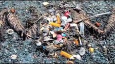 Survcast - Charles Moore - the Great Pacific plastic trash island - YouTube