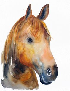 HORSE by DIMDIart Original watercolor painting 11X14inch. $75.00, via Etsy....STUNNING!!