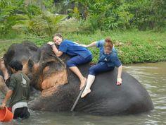 Baan Chang Elephant Home