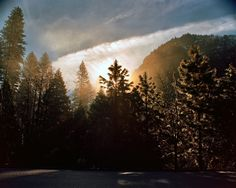 The sun peeks out from behind large pine trees at Yosemite, with a cloudy sky.