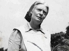 Dorothy Day sainthood cause finds strong support from bishops :: Catholic News Agency (CNA) Catholic Beliefs, Catholic News, Today's Saint, Dorothy Day, Religious Pictures, Pope John Paul Ii, People Of Interest, Women In History, Religion