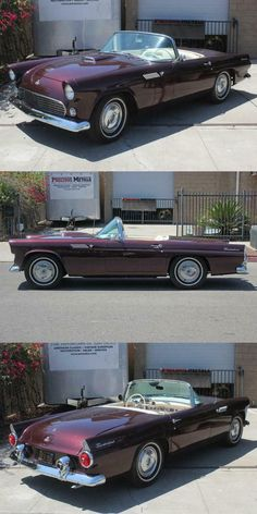 1955 Ford Thunderbird Convertible [39,990 Miles] Ford Thunderbird, Corvette, Cars For Sale, Convertible, Chevy, Vehicle, Corvettes, Cars For Sell, Vehicles