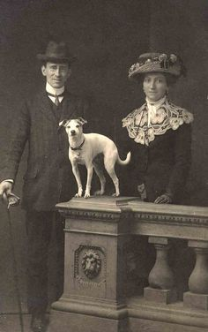Vintage Photo Finely Dressed Couple and their Terrier - Rat Terrier, Terrier Mix, White dog, 1900's Formal Photo Studio set