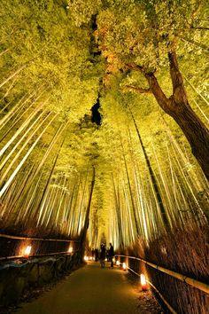 Del 12 al 21 de Diciembre 2014 en la hermosa localidad japonesa de Arashiyama en Kyoto, entre montañas y el río Katsuragawa se celebra...