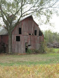 Ok, I admit it. I love barns. I'm fascinated with the history behind these beacons to the past.