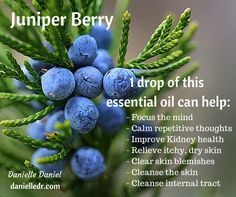 Juniper Berry Essential Oil uses