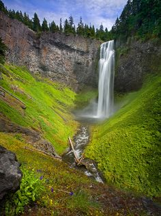 """SALT CREEK FALLS""  Willamette National Forest, Oregon - Oregon's largest waterfall, Salt Creek Falls, photographed here in soft light and complimented by a beautiful sky and wildflowers. Photograph by Marc Adamus"