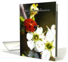Spanish Birthday Card - Ladybird - Ladybug - Feliz Compleaños card