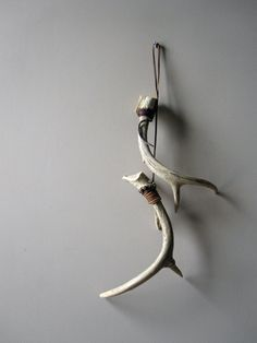 Shed Antler Display Many Ways To Hang Antlers